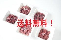 画像1: 【送料無料】生肉100gパックお試しセット(ダイス)